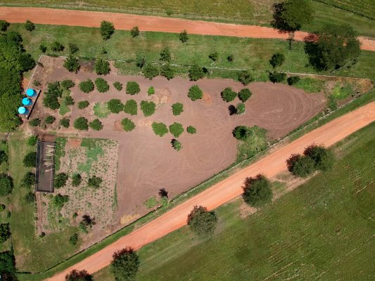 Agrofloresta no pantanal