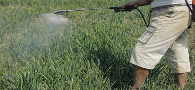 perigos do fosfato