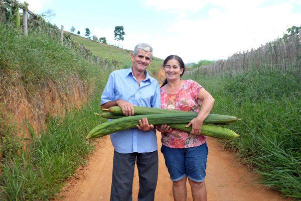 Zizi e Seu Adão, parceiros Positiv.a, com as Luffa Cylindrica, que vai virar bucha vegetal.